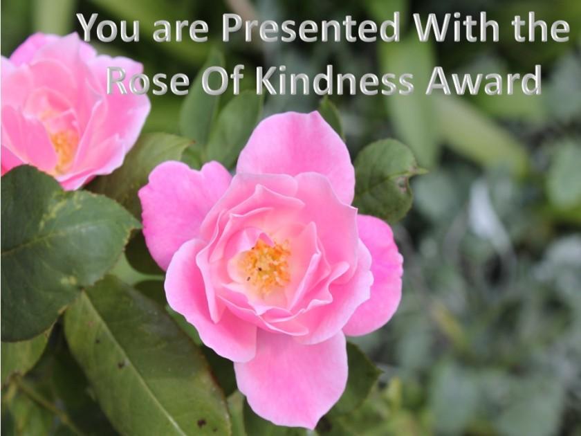 Rose of Kindness Award